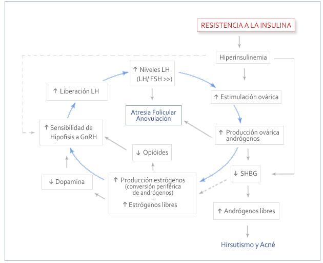 Esquema resistencia a la insulina