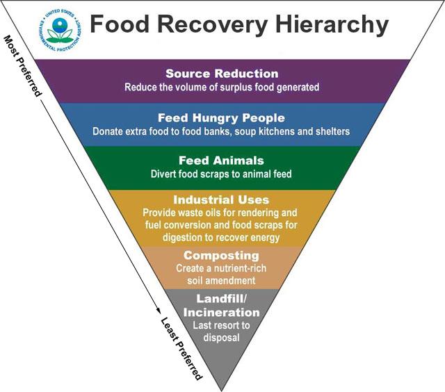 Soluciones al desperdicio alimentario